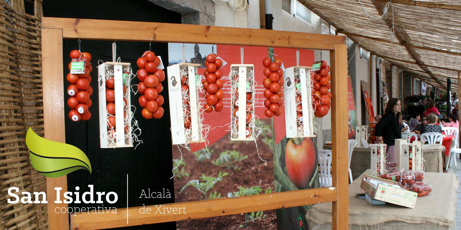 cooperativa_agricola_san_isidro_alcala_de_xivert